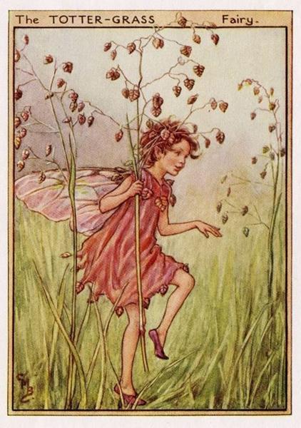 0e051765382972f13ecd55593f5b914b--cicely-mary-barker-flower-fairies (Copy)