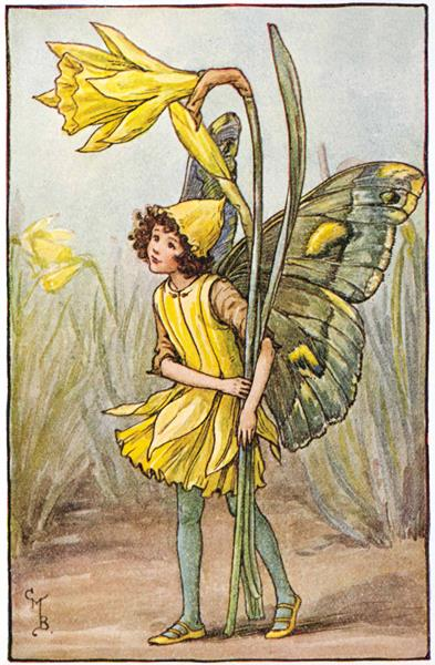 Illustration for the Daffodil Fairy from Flower Fairies of the Spring. A girl fairy stands holding two daffodils, one in flower and one in bud. 300.1.8 FF Spring 8 1923