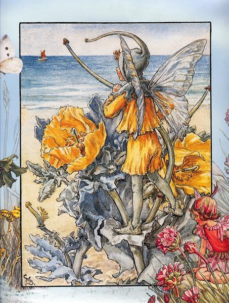 cicely barker_the horned poppy fairy (Copy)