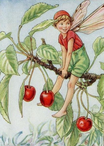 counted-cross-stitch-patterns-the-cherry-tree-fairy-by-cicely-mary-barker-the-flower-fairies-the-flower-fairy-series_6875933 (Copy)