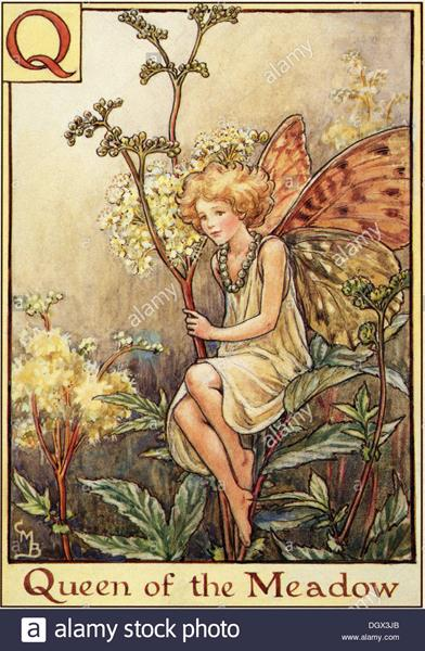 flower-fairies-illustration-by-cicely-mary-barker-the-queen-of-the-DGX3JB (Copy)