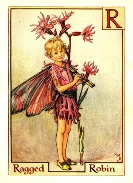 ragged-robin-flower-fairy-print-cicely-mary-barker (Copy)